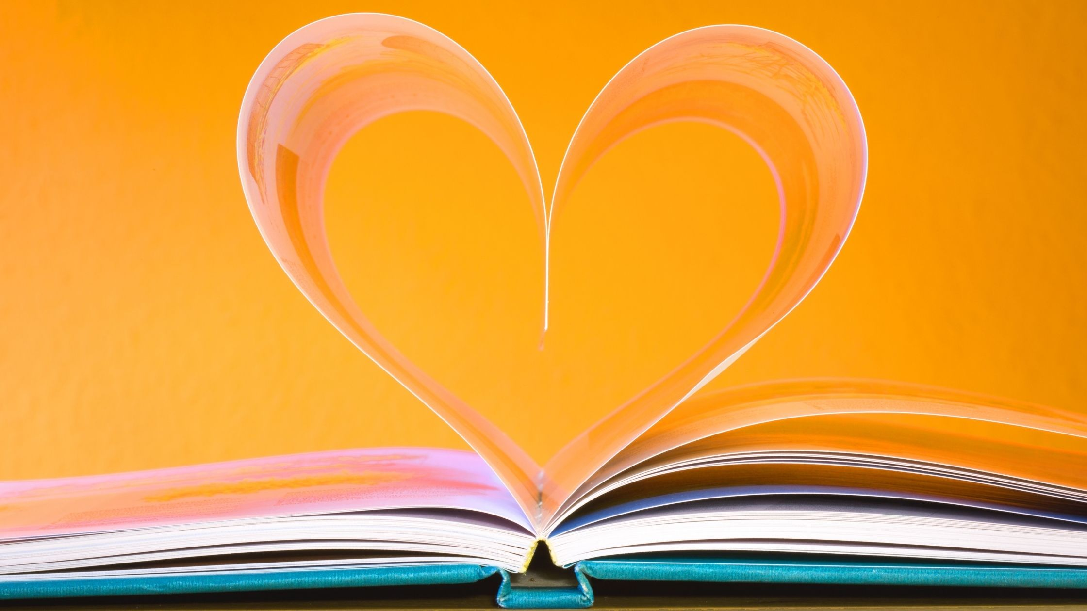 Book laid out with two pages curled to form a heart shape